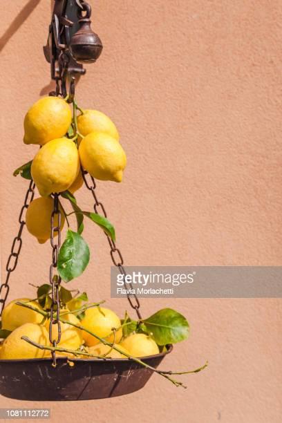 lemons decoration in the streets of amalfi, italy - カンパニア州 ストックフォトと画像