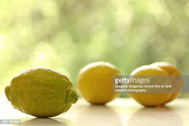 lemons - gregoria gregoriou crowe fine art and creative photography ストックフォトと画像