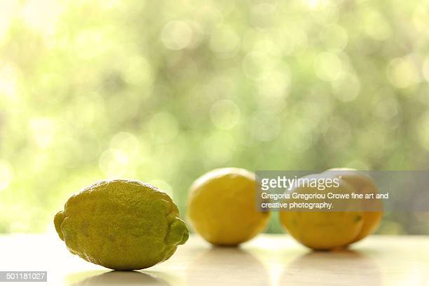 lemons - gregoria gregoriou crowe fine art and creative photography stock photos and pictures