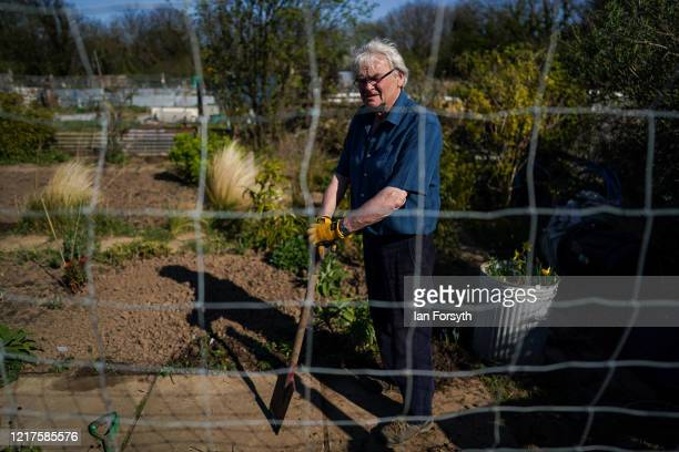Len Harvey poses for a photograph as he tends to his allotment and follows government guidelines on social distancing and time restrictions on April...