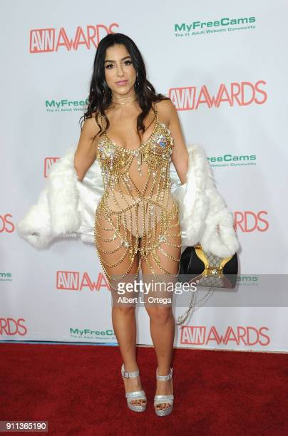 Lena The Plug attends the 2018 Adult Video News Awards held at Hard Rock Hotel Casino on January 27 2018 in Las Vegas Nevada