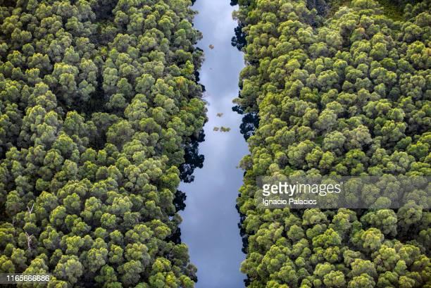 lençóis maranhenses national park - brazil stock pictures, royalty-free photos & images