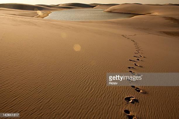 lençóis maranhenses - impronta del piede foto e immagini stock