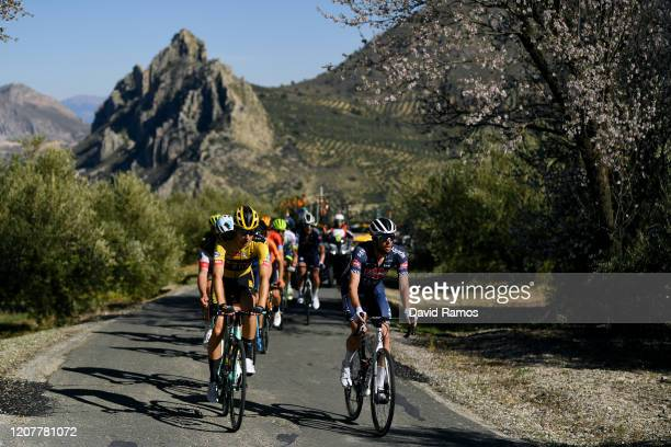Lennard Hofstede of The Netherlands and Team Jumbo-Visma / Jimmy Janssens of Belgium and Team Alpecin-Fenix / during the 66th Vuelta a Andalucía -...