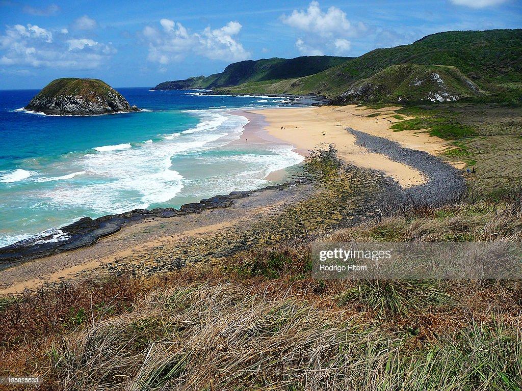 Leão Beach : Foto de stock
