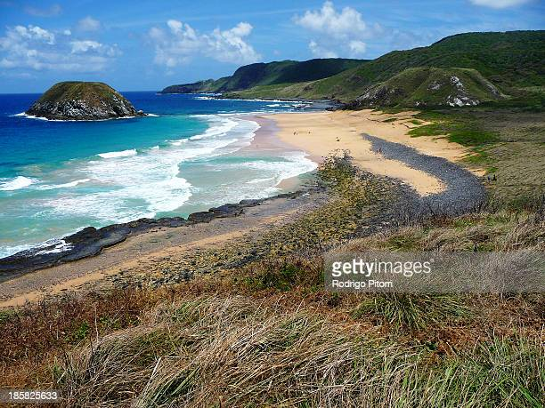 leão beach - rodrigo pitorri stockfoto's en -beelden