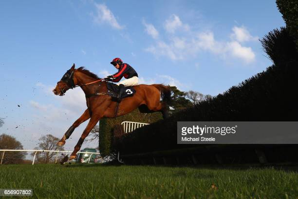 Leo Mahon riding Night Alliance during the NFRC Southwest Open Hunters' Steeple Chase at Chepstow Racecourse on March 23 2017 in Chepstow Wales
