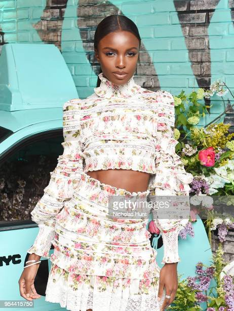 Leomie Anderson attends the Tiffany Co Paper Flowers event and Believe In Dreams campaign launch on May 3 2018 in New York City