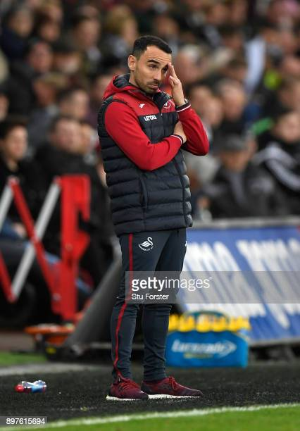 Leon Britton Caretaker manager Player/Manager of Swansea City reacts during the Premier League match between Swansea City and Crystal Palace at...