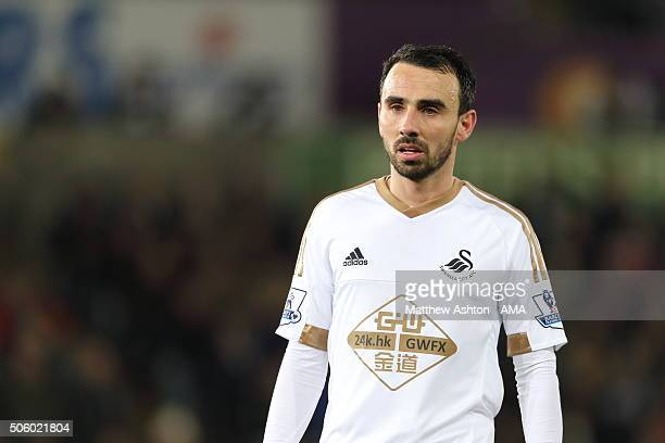 Leon Britton of Swansea City during the Barclays Premier League match between Swansea City and Watford at the Liberty Stadium on January 18 2016 in...