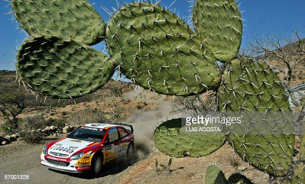 Spanish driver Daniel Sordo powers his car during the second day of the FIA World Rally Championship's third stage in the Mexican state of Leon 4...