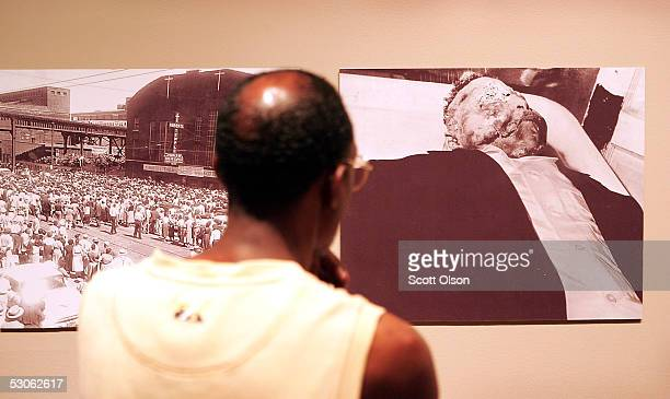 Leon Smith examines photographs from the funeral of Emmett Till at the Chicago Historical Society June 13 2005 in Chicago Illinois The Without...