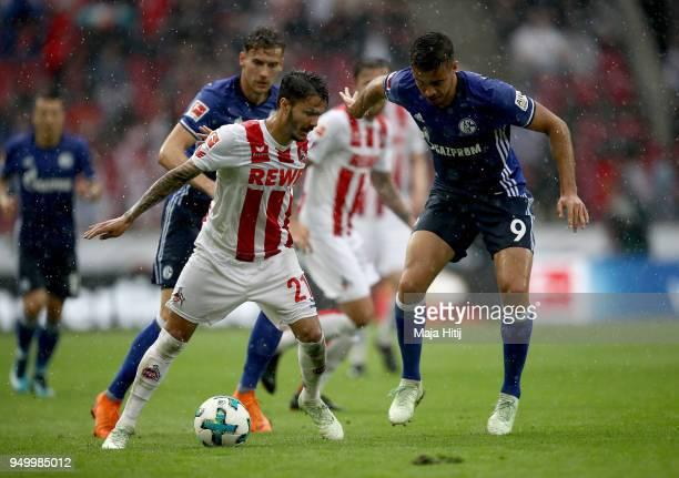 Leonardo Bittencourt of Koeln and Franco di Santo of Schalke battle for the ball during the Bundesliga match between 1 FC Koeln and FC Schalke 04 at...
