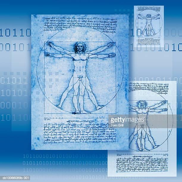 Leonardo Da Vinci drawing, digital composite