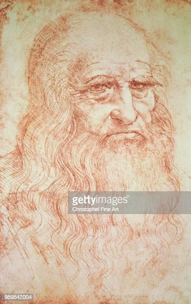 Leonardo Da Vinci 'Portrait of a Man in Red Chalk' presumed Selfportrait Red Chalk Drawing Paris Bibliotheque Nationale