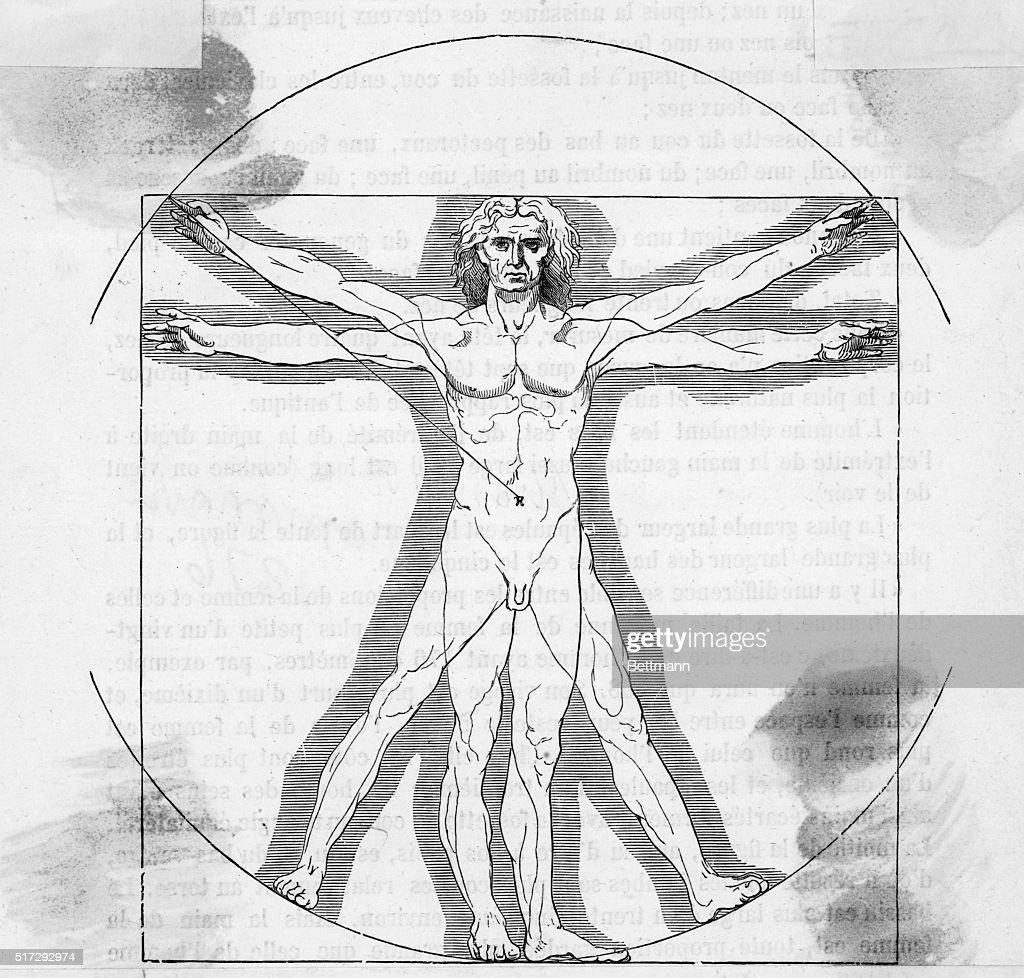 Line Version Vitruvian Man by Leonardo da Vinci Pictures | Getty Images