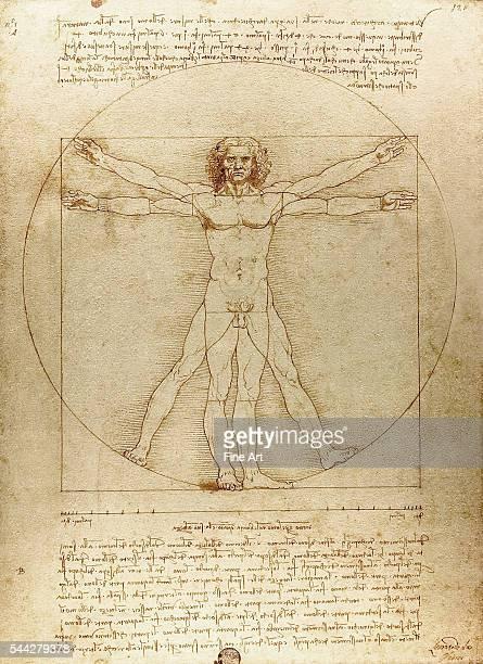 Leonardo da Vinci Vitruvian Man c 1490 pen and ink with wash over metalpoint on paper 344 × 255 cm Gallerie dell'Accademia in Venice