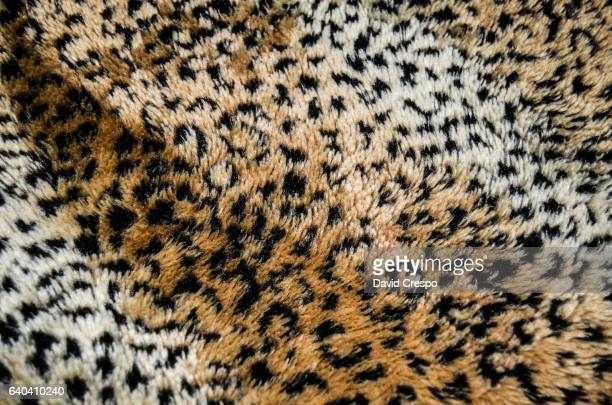 leopard - leopard print stock pictures, royalty-free photos & images