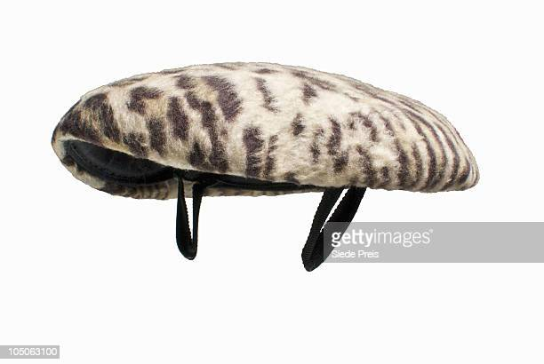 leopard skin pill box hat 1950's - pillbox hat stock photos and pictures