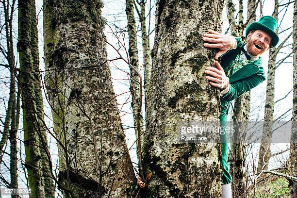 leprechaun man hiding behind tree - leprechaun stock pictures, royalty-free photos & images