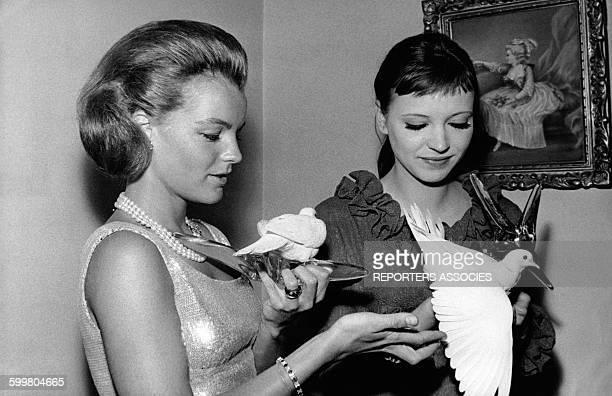 Les actrices Romy Schneider et Anna Karina tenant deux colombes blanches sur leurs mains circa 1960 en France