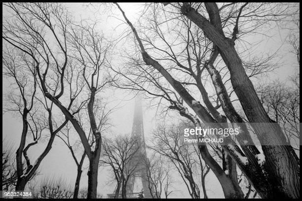 Les arbres du Champ de Mars et la Tour Eiffel sous un ciel blanc de neige 1995 a Paris France