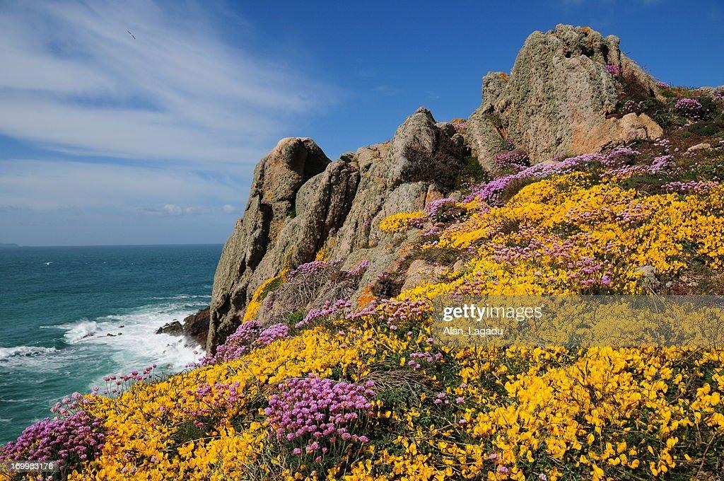 Les Landes, Jersey. : Stock Photo