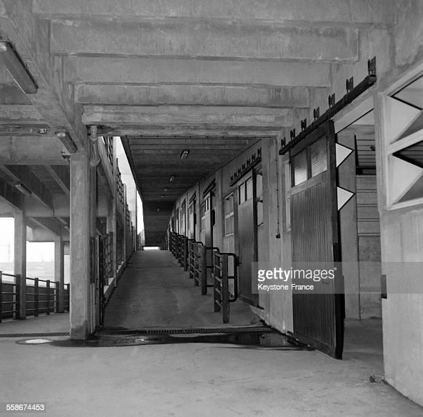 Les nouveaux batiments des abattoirs de la Villette le 8 fevrier 1965 a Paris France