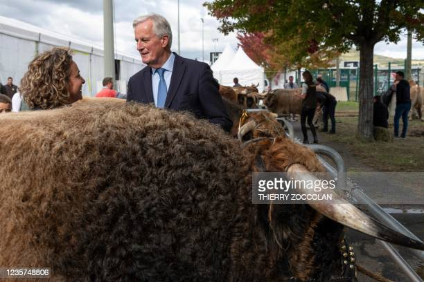 Les Republicains Presidential candidate Michel Barnier poses with a farmer breeding Aubrac cows during the inauguration of the 10,000 square metre...