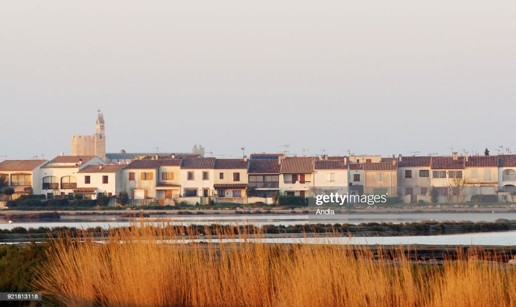 Les Saintes-Maries-de-la-Mer, in the Camargue Regional Nature Park. In the background, the fortified church.
