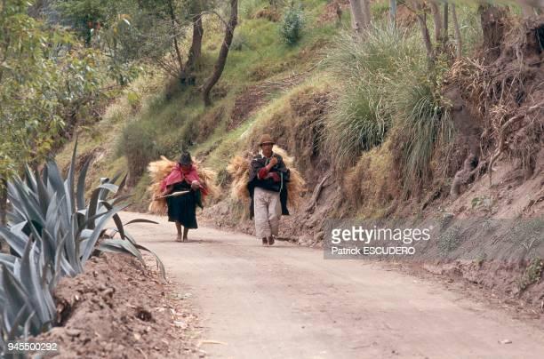 Les Salasacas ethnie du centre de l'Equateur sont les descendants d'un groupe originaire du lac Titicaca dplac par les Incas Ils sont reconnaissables...