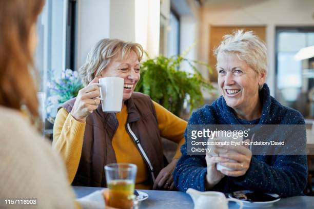 lesbian couple and adult daughter drinking coffee and talking in cafe - active seniors stock pictures, royalty-free photos & images