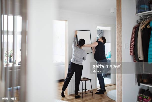 lesbian couple arranging paintings on wall at home - arranging stock pictures, royalty-free photos & images