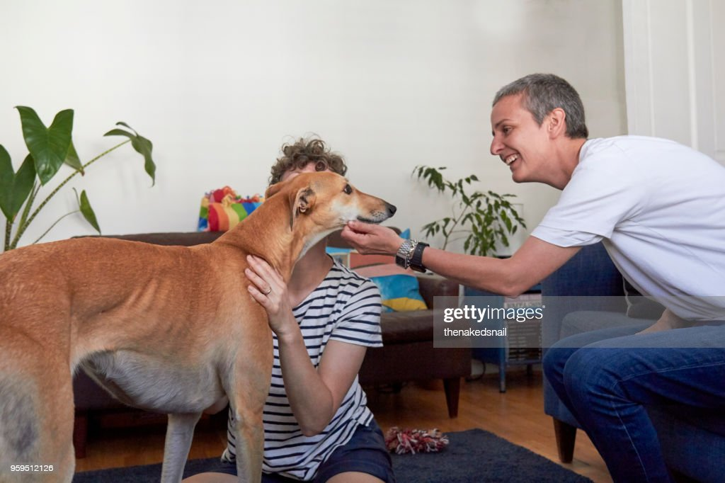 Lesbian couple at home with their dog : Stock Photo