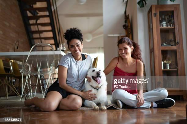 pareja lesbiana o amigos con berger blanc suisse dog at home - un animal fotografías e imágenes de stock