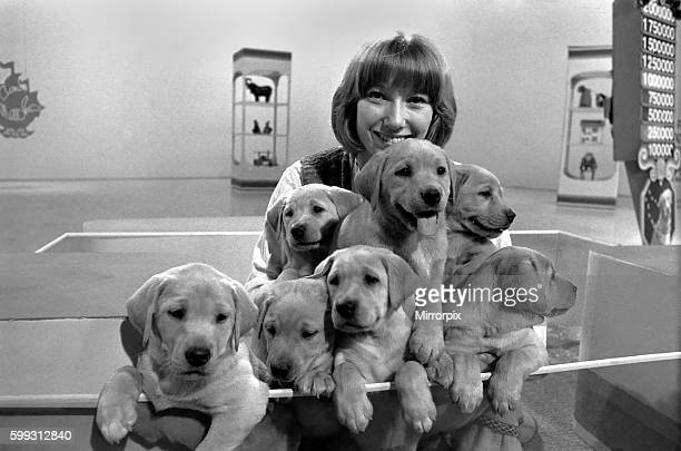 Lesley Judd Blue Peter and Puppies January 1975 7500022