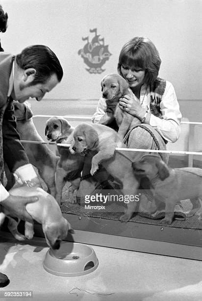 Lesley Judd Blue Peter and Puppies January 1975 7500022001