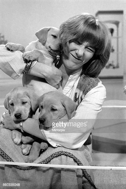 Lesley Judd Blue Peter and Puppies January 1975 7500022002