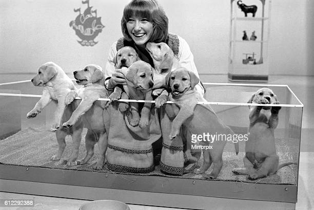 Lesley Judd Blue Peter and Puppies January 1975 7500022003