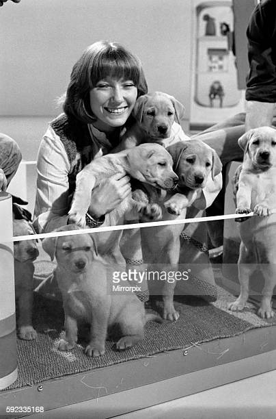 Lesley Judd Blue Peter and Puppies January 1975 7500022004