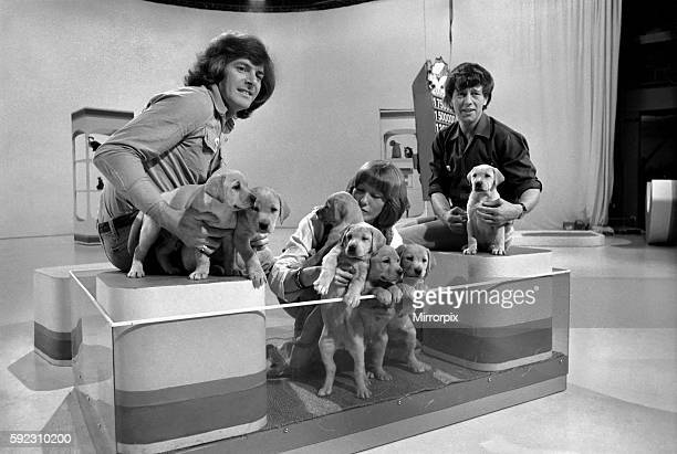 Lesley Judd Blue Peter and Puppies January 1975 7500022005