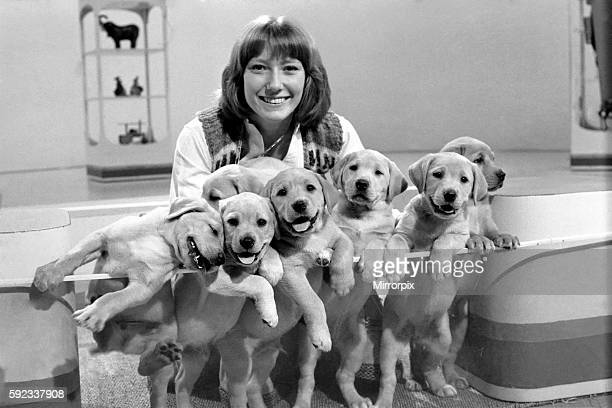 Lesley Judd Blue Peter and Puppies January 1975 7500022006