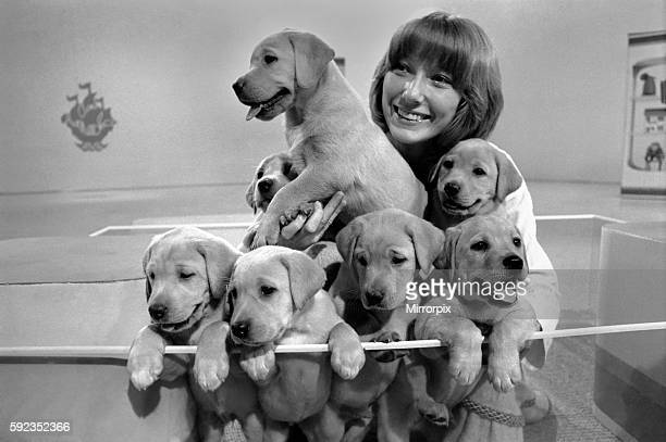 Lesley Judd Blue Peter and Puppies January 1975 7500022007
