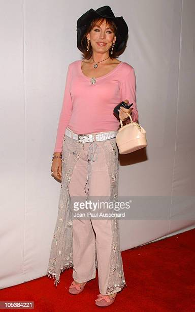 LesleyAnne Down during CBS and UPN 2005 TCA Party Arrivals at Quixote Studios in Los Angeles California United States