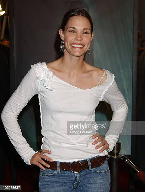Leslie Bibb during 'The Matrix Revolutions' Premiere at Disney Concert Hall in Los Angeles California United States