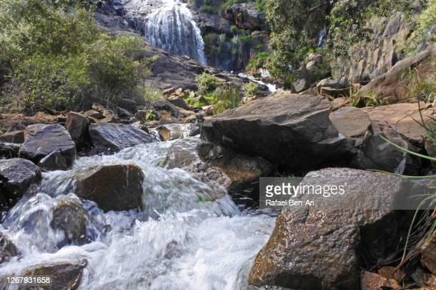 lesmurdie falls in perth western australia - rafael ben ari stock-fotos und bilder