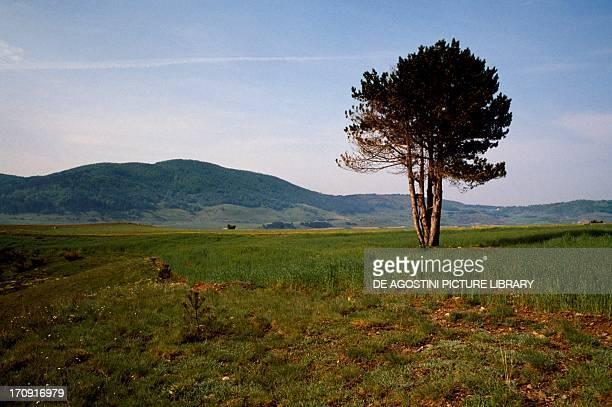 Lesser Sila plateau, Sila National Park, Calabria, Italy.