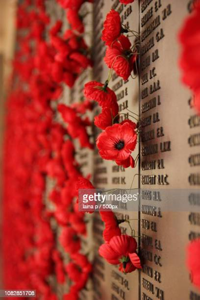 lest we forget - lest we forget stock photos and pictures
