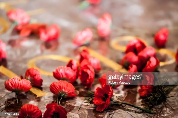 lest we forget - lest we forget stock pictures, royalty-free photos & images