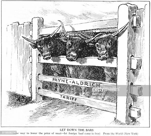 'Let Down the Bars' Political cartoon against the PayneAldrich Tariff Arguing that meat prices could be lowered by letting foreign beef in free